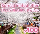 Jinhae Gunhangje Festival, 鎮海軍港節, Cherry Blossom, 韓國賞櫻, 春季限定, Spring Limited Offer