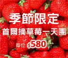 草莓農場, 鐵路自行車, 晨靜樹木園燈節, strawberry farm, rail bike, the garden of morning calm