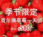 草莓农场, 铁路自行车, 晨静树木园灯节, strawberry farm, rail bike, the garden of morning calm